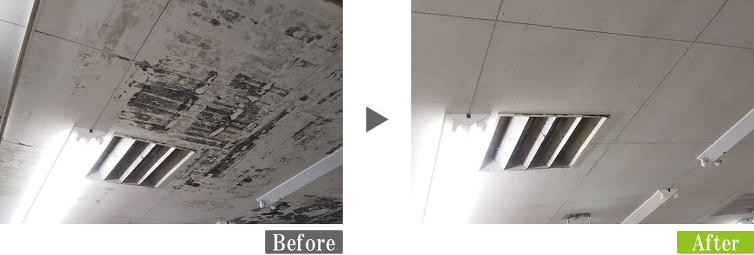 天井に発生したカビ(真菌)汚れを環境対応型特殊洗浄G-Eco工法で除去
