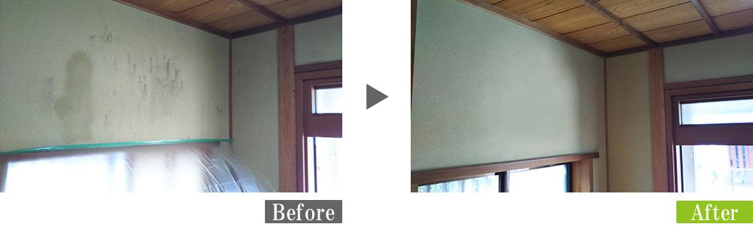 聚楽壁に発生したカビ(真菌)汚れを環境対応型特殊洗浄G-Eco工法で除去